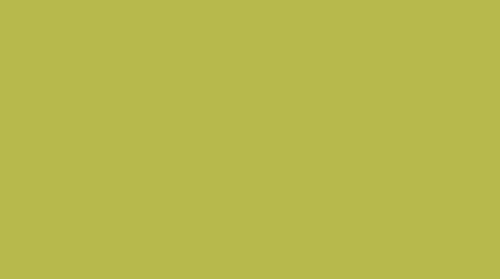 Green color. No. S 2050 - G70Y. Becker color catalogue, NCS scale.