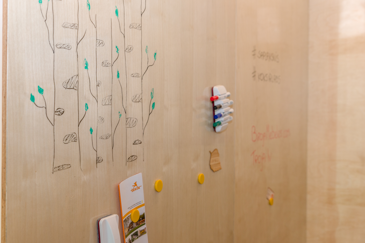 Magnetic plywood board panels allows to display the unique texture of birch. It is possible to draw on them, erase the drawing, as well as to attach magnets.
